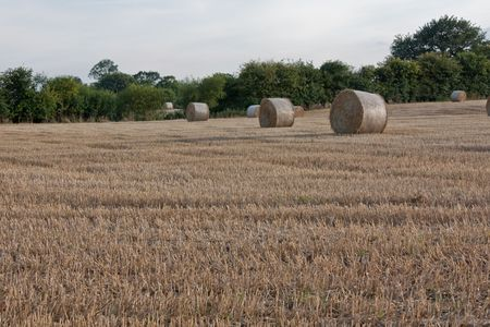 Hay bales after harvest in Suffolk Stock Photo - 5439753