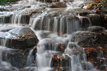 A small waterfall carrying autumn leaves on its journey photo