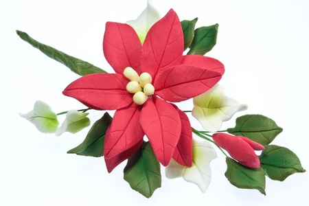 sugarcraft: An edible sugarcraft Christmas cake decoration consisiting pf a pointsettia flower & ivy leaves Stock Photo