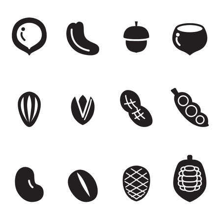 brazil nut: Nut icon Set