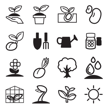 cultivate: cultivate  Plant Grow icons set Illustration