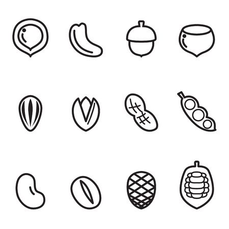 brazil nut: Nut icon Set