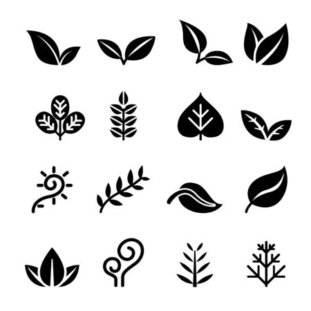vegetation: Leaf ,Plant, Herb , vegetation , icon set