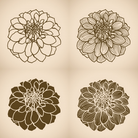 Hand drawn Dahlia flower, set of four styles  One color, vector illustration Stock Vector - 24190136