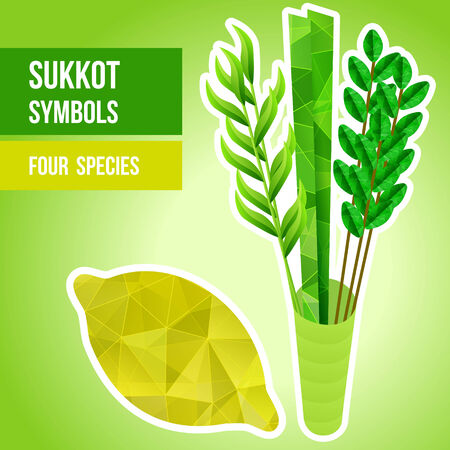 tabernacles: Four species - palm, willow, myrtle , etrog - symbols of Jewish holiday Sukkot  Vector illustration  Illustration