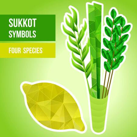 sukkot: Quattro specie - di palma, salice, mirto, Etrog - simboli della festa ebraica di Sukkot illustrazione vettoriale Vettoriali