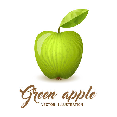 granny smith apple: Realistic green apple, isolated on white - vector illustration. Big green apple with bright green leaf.