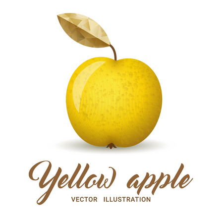 yelllow: Realistic yellow apple, isolated on white - vector illustration. Big yellow apple with bright golden leaf.
