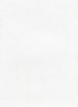 watercolor paper: White watercolor paper with texture. Vertical background for painting. Empty white page, textured.