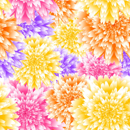 Vector chrysanthemum floral background. Aster flower vector illustration. Wedding background design. Seamless floral pattern.