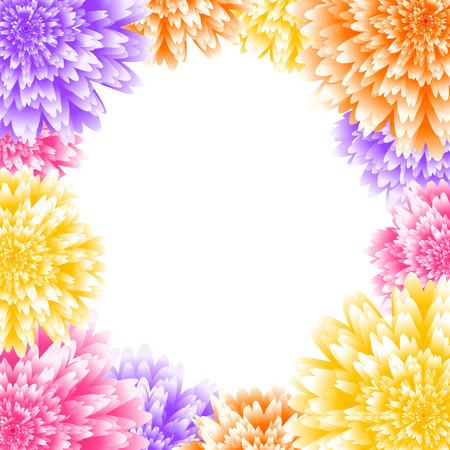 Vector chrysanthemum floral background. Aster flower vector illustration. Wedding background design. Floral frame.