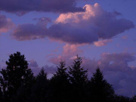 紫サンセット 写真素材