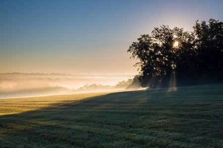 Mowed grassy Pennsylvania field at sunrise with sun, obscured by trees, shining through low mist in the distance.