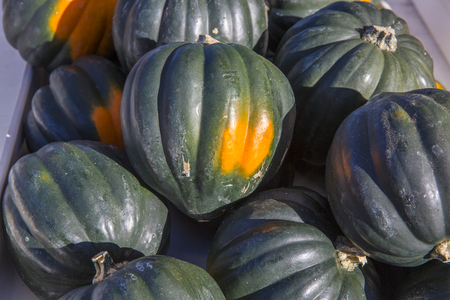 several acorn squash piled together Stock Photo