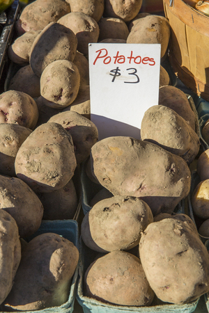 brown dusty potatoes in baskets at a farmers market for 3 dollars Stock Photo