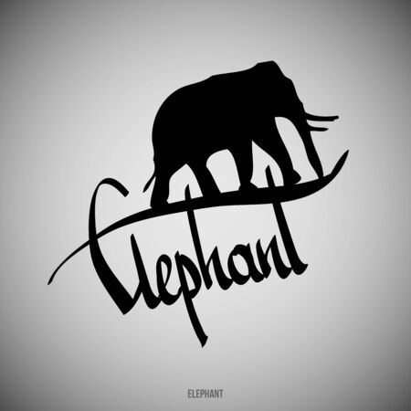 Elephant Calligraphic elements -  black design elements