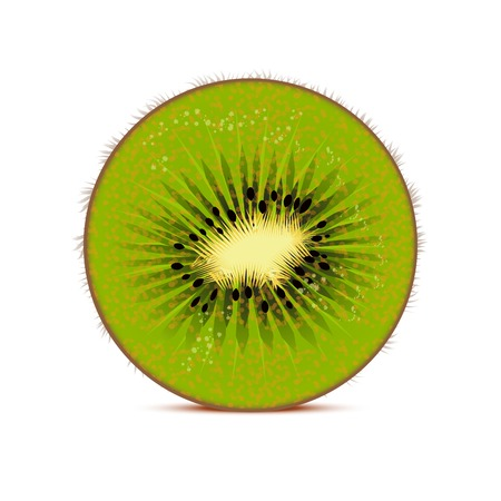 Kiwi vector illustration  fruit background Vector