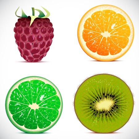nectarine: Vector illustration - set of fruits