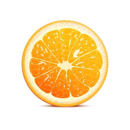 orange vector illustration  fruit background