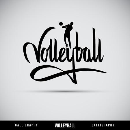 typography signature: Letras Voleibol mano - la caligraf�a hecha a mano, vector