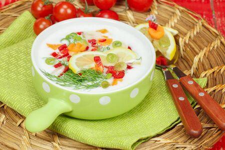 Cold Yogurt soup. Macro, selective focus photo