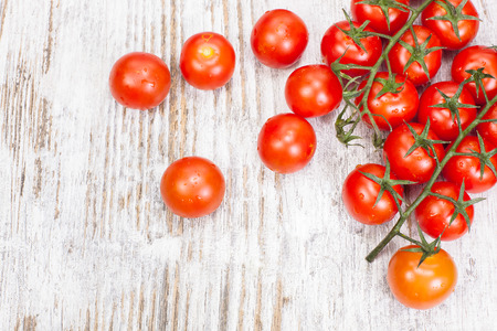 Cherry tomatoes. Cherry tomatoes on vine with water drops. Copy space composition