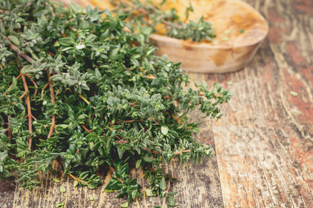 Thyme. Bunch of fresh Thyme on the rustic wooden table. Macro, selective focus 版權商用圖片