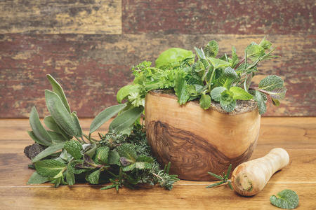 Different culinary herbs in a mortar