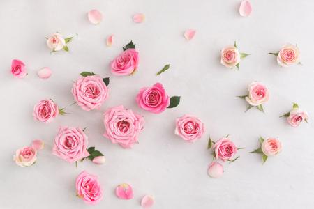 lãng mạn: Pastel hồng nền. hoa hồng mềm khác nhau và lá nằm rải rác trên nền cổ điển, nhìn trên cao