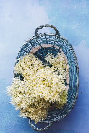 Freshly picked elderflowers in basket on rustic table. Top view, blank space