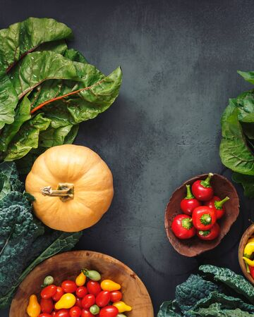 Variety of freshly harvested organic vegetables from the farmers market, dieting and nutrition concept.  Top view, flat lay