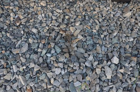 This picture shows a simple pebbles texture with small blades