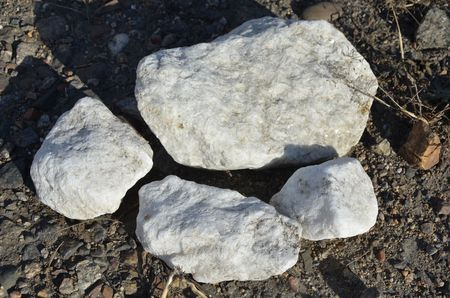 This picture shows white stones on the ground