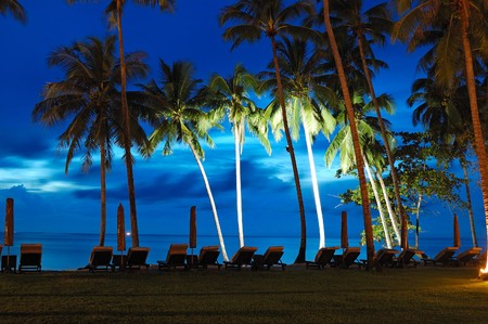 chang: Beach at sunset with illuminated coconut palms, Koh Chang island, Thailand