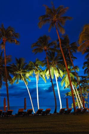 Beach at sunset with illuminated coconut palms, Koh Chang island, Thailand photo