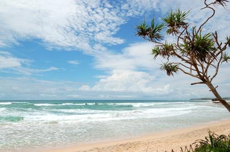 Beach and turquoise water of Indian Ocean, Bentota, Sri Lanka photo