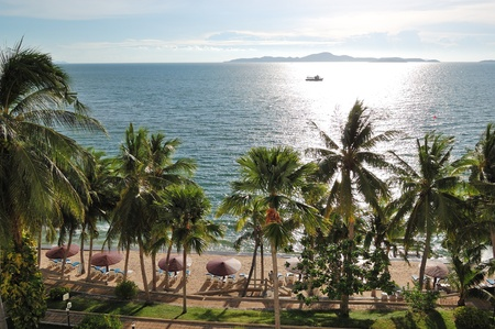 Beach with palm trees of luxury hotel, Pattaya, Thailand