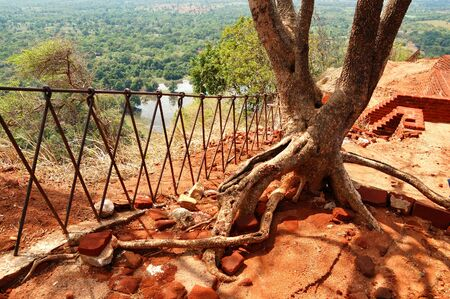 The view from Sigiriya (Lions rock) is an ancient rock fortress and palace ruins, Sri Lanka photo