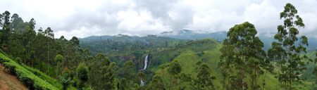 The panorama of tea plantations and waterfall in Nuwara Eliya, Sri Lanka photo