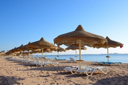 Beach at the luxury hotel, Sharm el Sheikh, Egypt photo