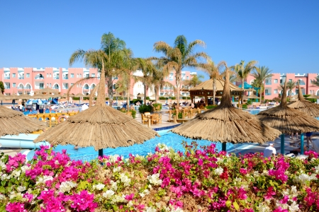 The view on swimming pool at luxury hotel  flowers are in focus , Sharm el Sheikh, Egypt