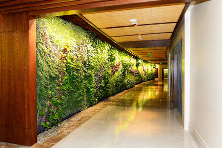 indoor plants: Interior of the luxury hotel in night illumination with green plants, Dubai, UAE