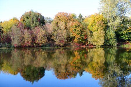 The autumn colors of trees near river, Bila Tserkva, Ukraine