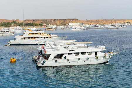 bandera de egipto: SHARM EL SHEIKH, EGYPT -  DECEMBER 4: The sail yachts with tourists are in harbor of Sharm el Sheikh. It is popular tourists destination on December 4, 2013 in Sharm el Sheikh, Egypt