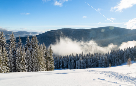 Bukovel in the winter. Snow-capped mountain peaks. Ukrainian Carpathians. 版權商用圖片