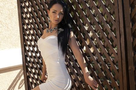 sexy glamour: fashion photo of sexy glamour model with black hair in elegant white dress with bijou Stock Photo
