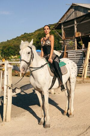 fashion photo of beautiful woman with dark hair in elegant sportive suit posing with white horse in  horse stable