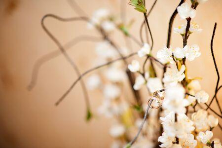 two wedding rings on a decorative tree Standard-Bild - 129351913