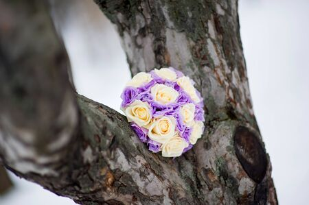 the bride s bouquet of colorful roses in winter lies on a forked tree trunk. Close up Standard-Bild