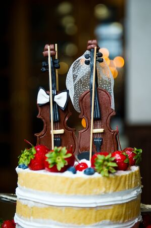 edible figurines on a cake in the form of two violins